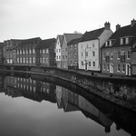 Wensum Reflections