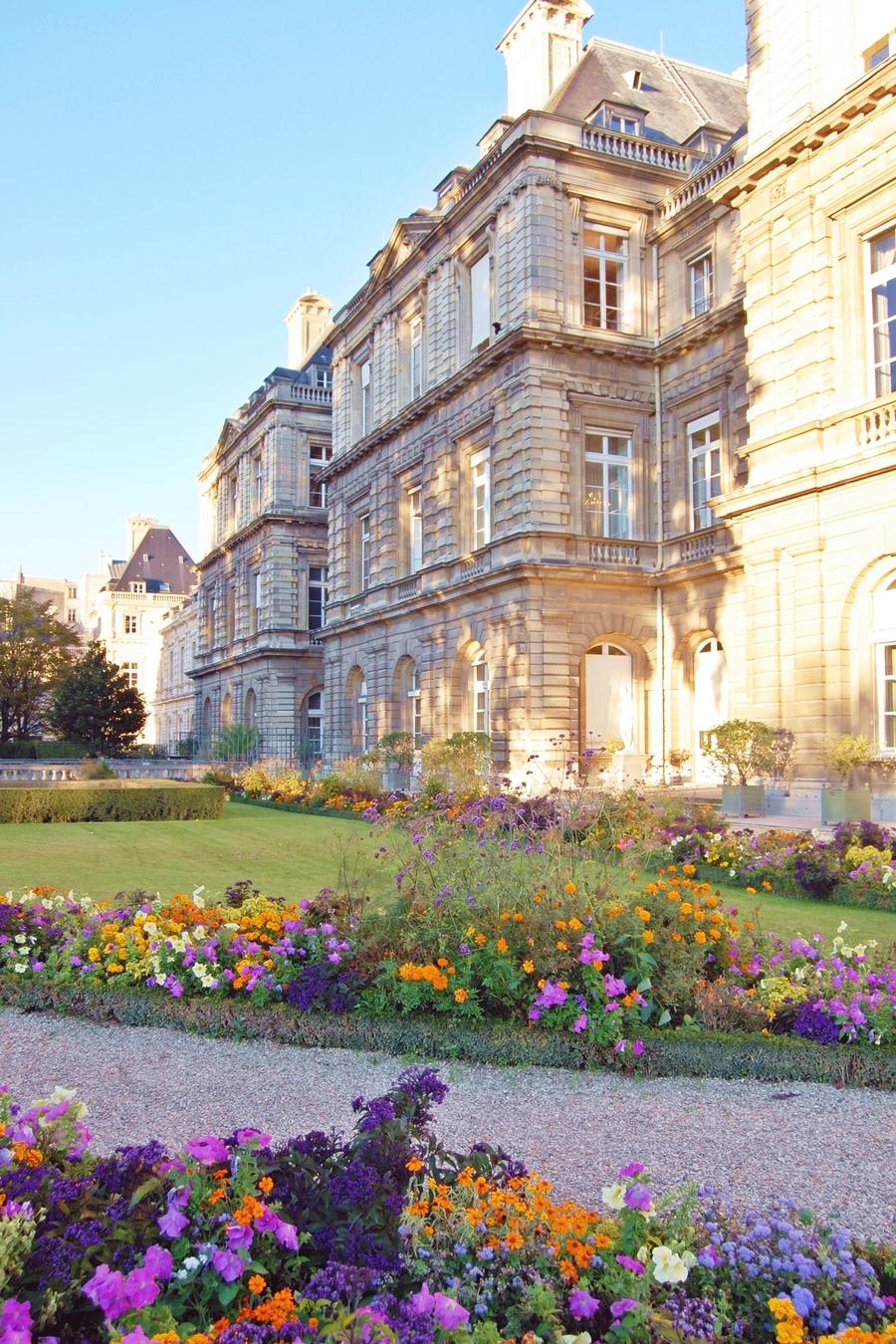 Autumn in Paris (5)