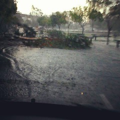 Got stuck in traffic so no storm shots. But trees down around Chermside, along with a few roads under deep water. Be careful out there!