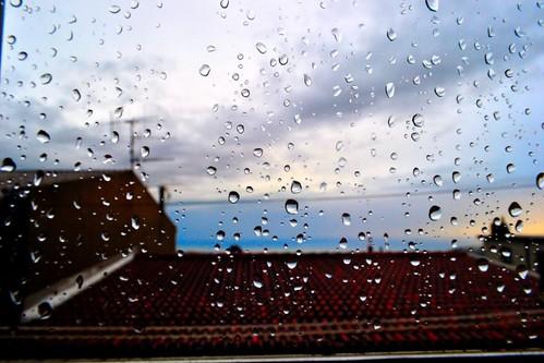 [Raindrops] After the rain