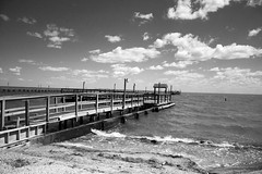 Aransas Bay 05