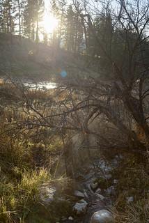 Hot creeks