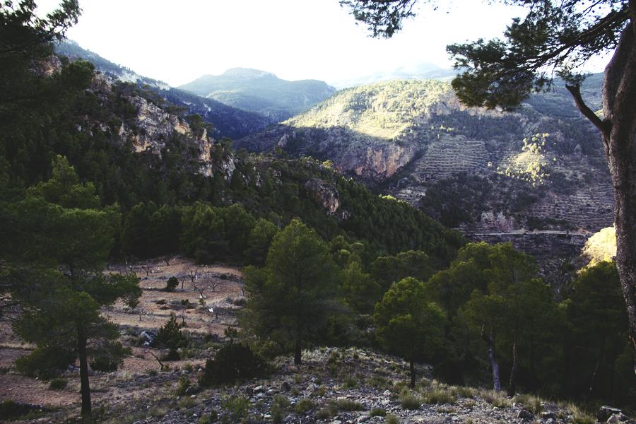 Spain_2013