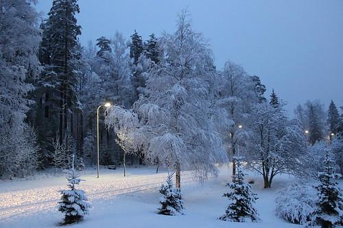 Snow 13_12_2014_4