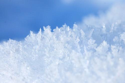 winter_macro