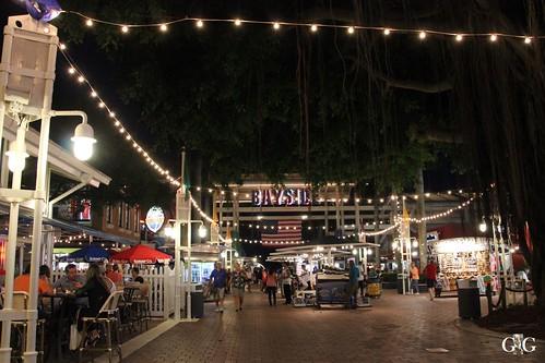 Miami vom 14.11.-16.11.2014 2