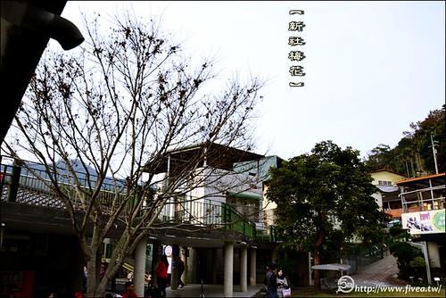 新社大林國小