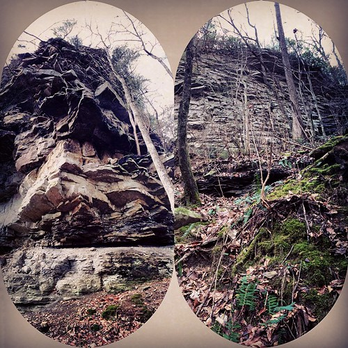 #massive #majestic #rocks and #winter #flora #downinthecanyon #belowthebluffs on the  #BigScirumCreek #inthewoods #enchantedforest #wildalabama
