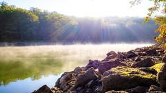 Early Fall Sunbeams