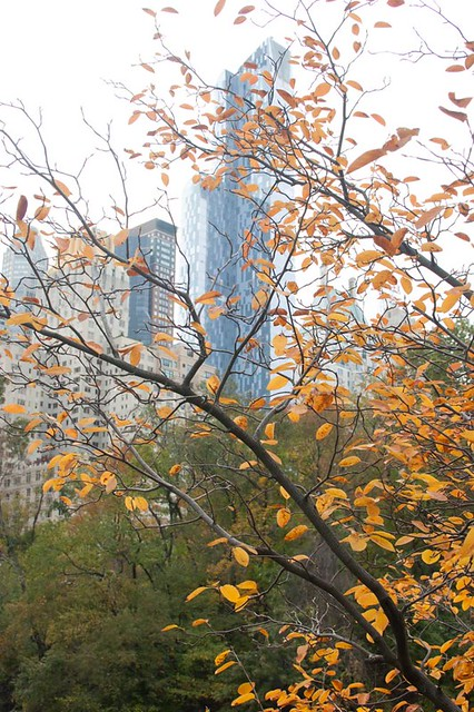 New York Fall