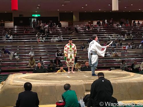 sumo (18 von 53)