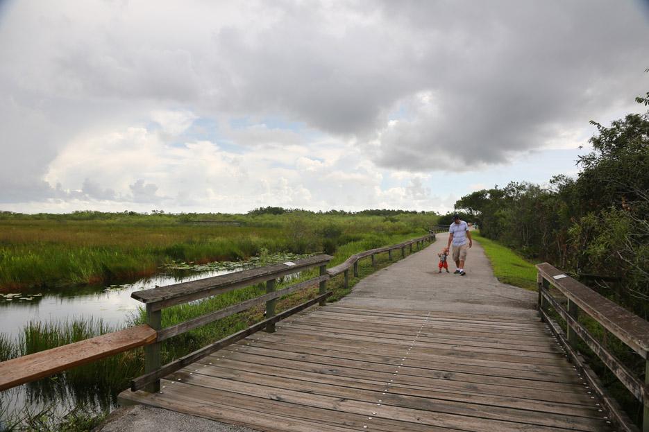 090714_Everglades04