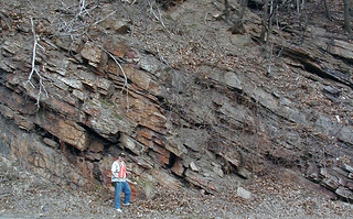Structurally tilted beds of the Clinch Quartzite (Lower Silurian; Rt. 460 roadcut, Narrows of the New River, Appalachian Mountains, Giles County, Virginia, USA)