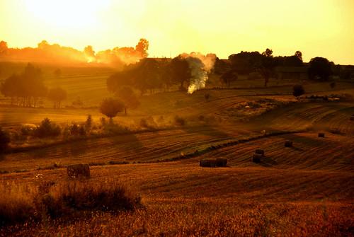 autumn fall nature field landscape poland polska polen lodz krajobraz lodzkie łódzkie wzniesieniałódzkie