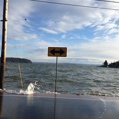 King Tide Nov 29, 2014 Southworth