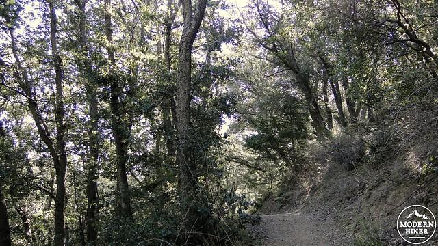 santiago-peak 9