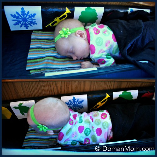 8 Weeks Old Early Learning Program