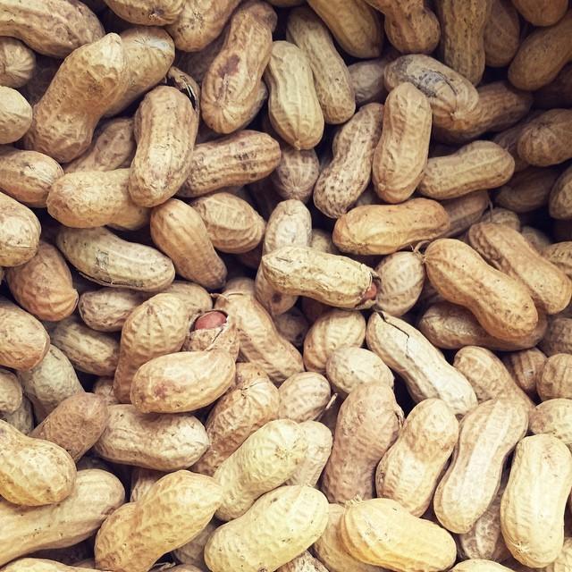 shelled peanuts process variation