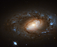 Hubble Spies Charming Spiral Galaxy Bursting with Stars