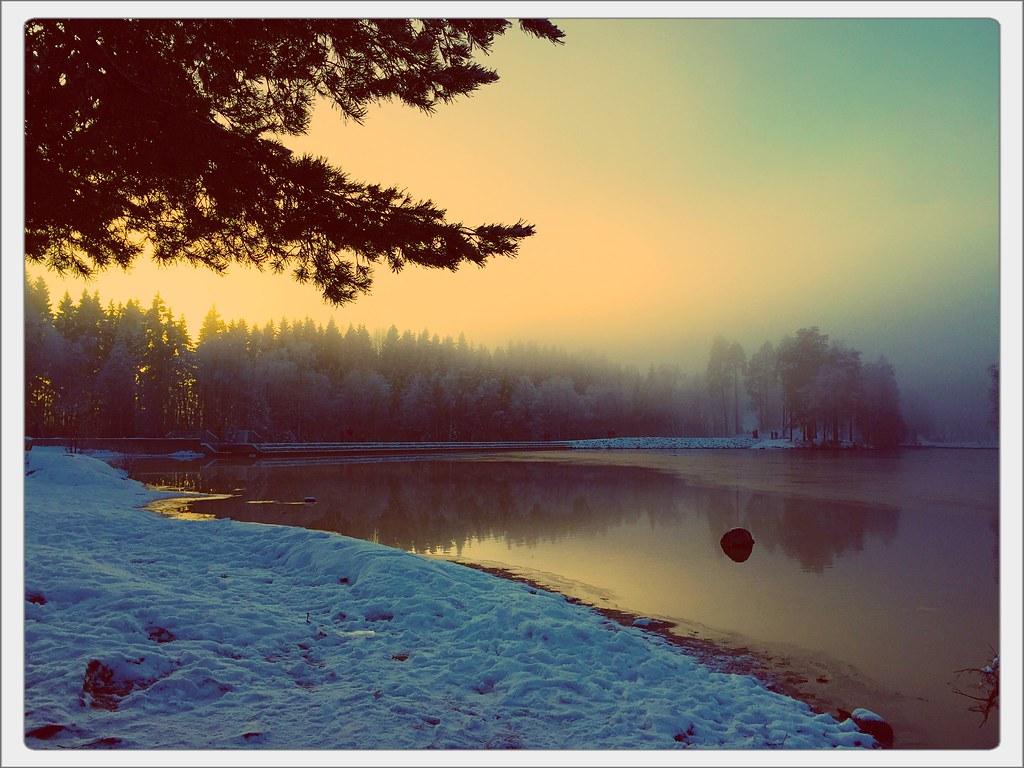 Misty Winter Sun 2