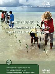 圖:IPCC 第五份氣候評估報告的其中一本封面, 使用 Tuvalu Overview 種植紅樹林的照片。
