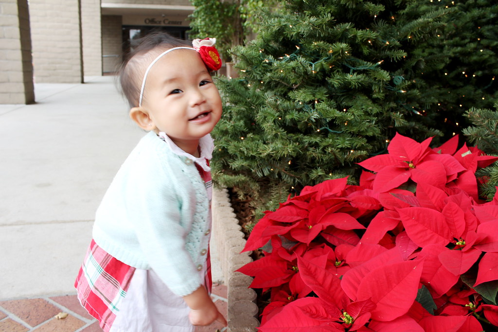 serene at 14 months at tms christmas chapel 2014