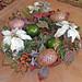 Christmas Centerpiece — Blumz by…JRDesigns in metro Detroit