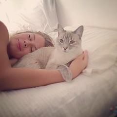 @natavalenzuela: Mi diario despertar ❤️ 😻 🎅 #Blue #cat #cats #catlover #december #lafelicidádelahome #GenteOriginal #awnld #TheWalkingGirl