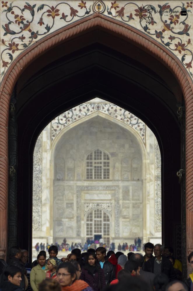 Taj Mahal-2436