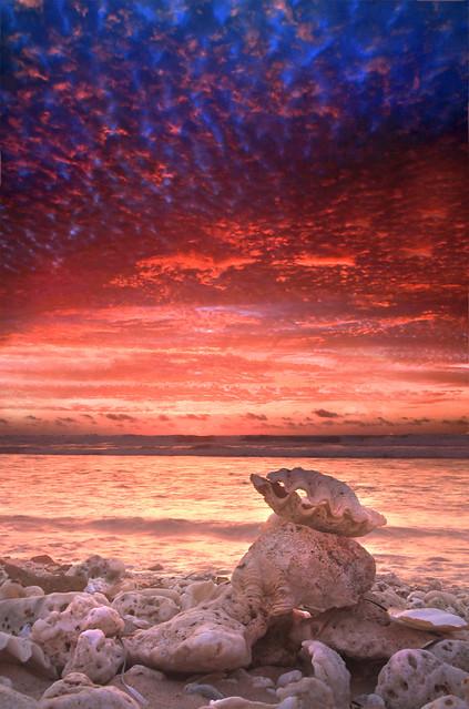 Clamshell sunset, Quobba, Western Australia