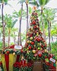 Christmas & Palm Trees