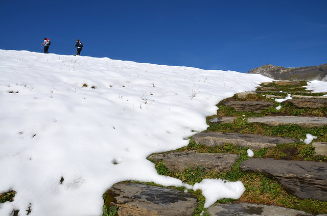Comienzo de la ruta al lago Bachalpsee