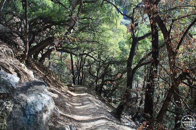 hermit-falls 15
