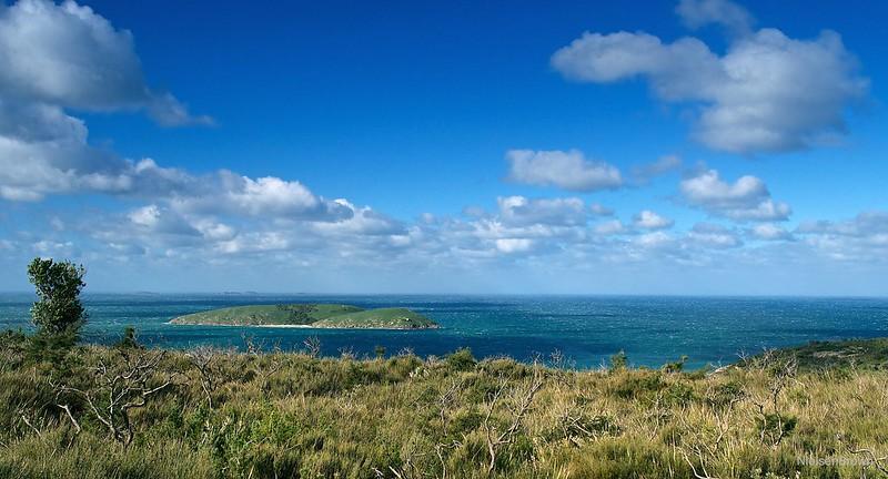 Windy Day on Rabbit Island