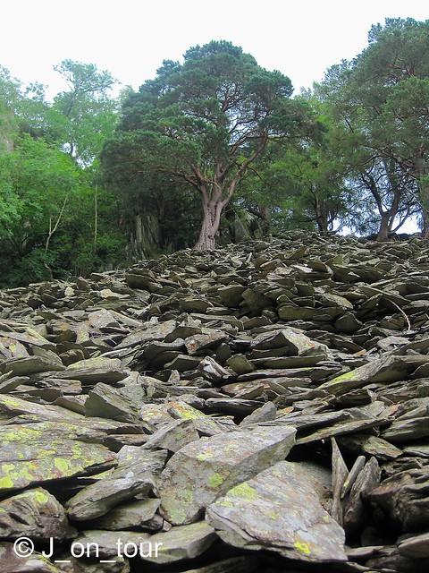 The slate climb  GJC_IMG_7024