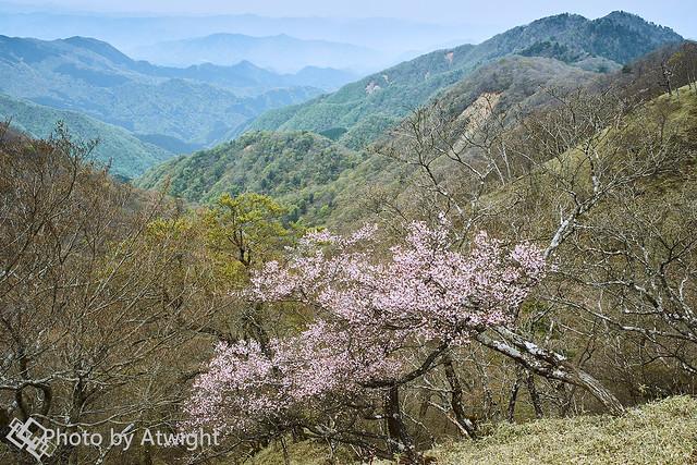 A mountain top, still, spring