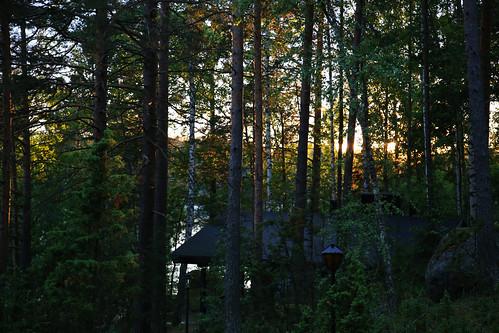 sunset summer sky sun lake tree beautiful canon suomi finland eos evening is cottage l mm usm mid f4 sauna juhannus 6d 24105 hämeenlinna hauho