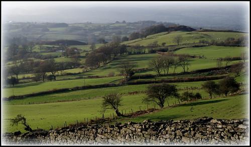 countryside fields powys