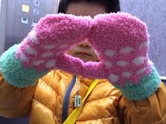 ミトン手袋とらちゃん 2014/11