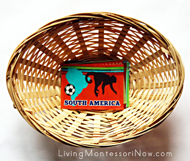 Continent Sticker Basket