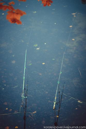 Autumn-226