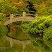 Small photo of Fort Worth Japanese Garden