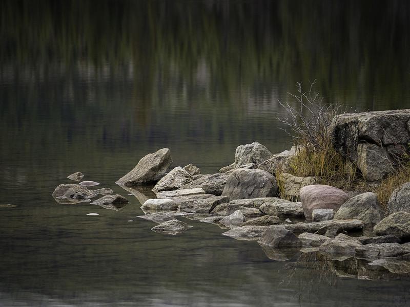 Fall into Jasper 2014 063