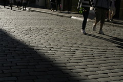floor(0.0), asphalt(0.0), lane(0.0), road surface(0.0), pedestrian crossing(0.0), zebra crossing(0.0), sidewalk(1.0), road(1.0), cobblestone(1.0), walkway(1.0), shadow(1.0), street(1.0), flooring(1.0), pedestrian(1.0), infrastructure(1.0),