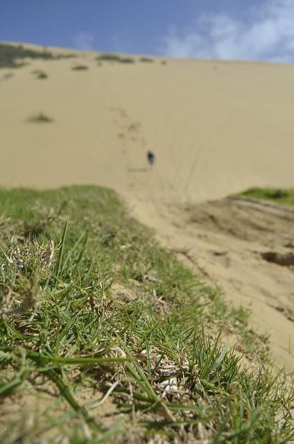 90 Mile Beach - sand dune