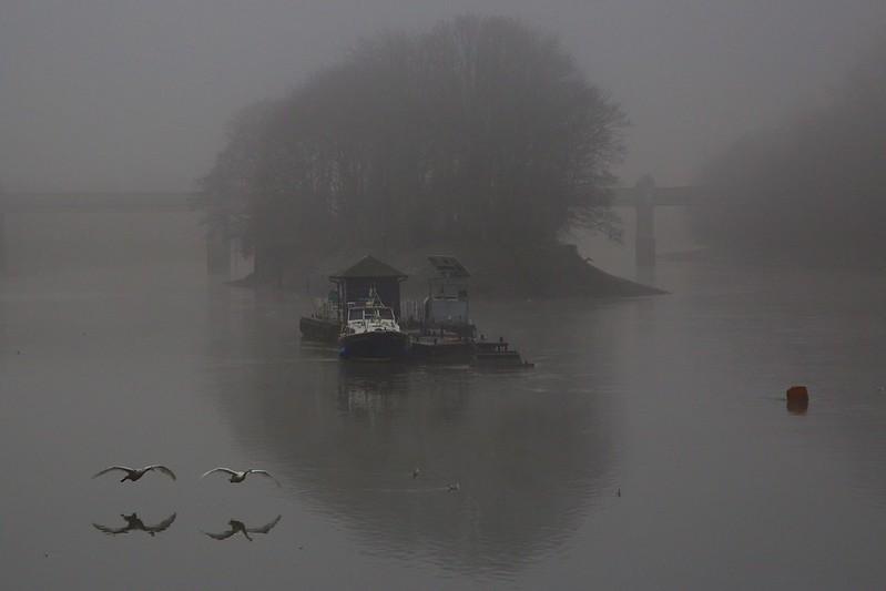 wylie_thames fog 1