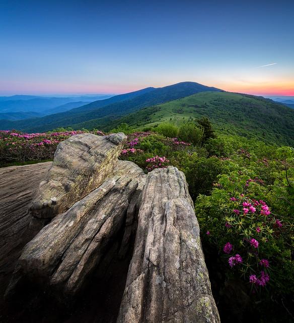 Jane Bald, Roan Mountain Sunset... [Explored]