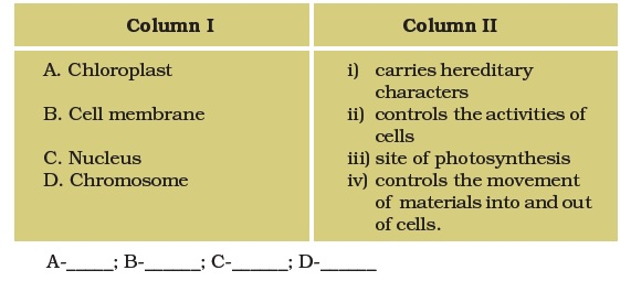 Class 8 Important Questions for Science – Cell—Structure and