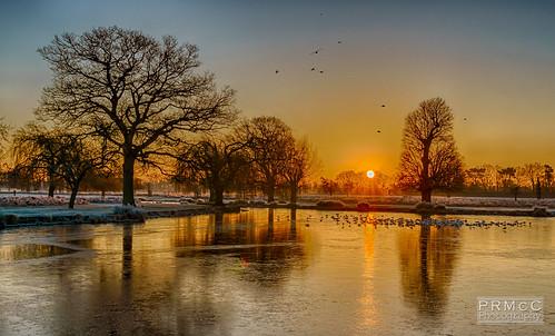 winter england sunrise landscape unitedkingdom bushypark hamptonwick a6000
