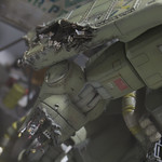 GBWC2014_World_representative_exhibitions-44